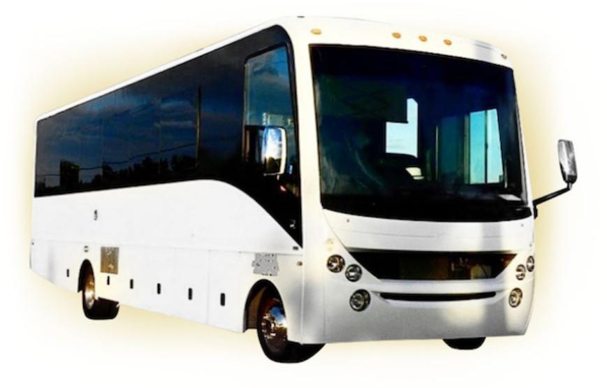 rockstarpartybus3